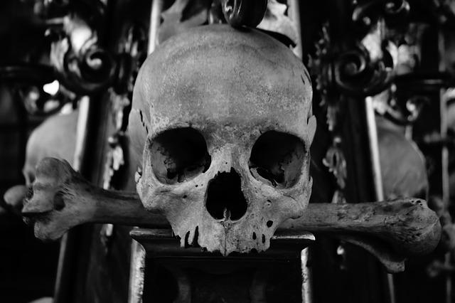lebka a zkřížené hnáty