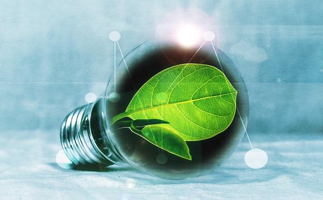 rostlina v žárovce