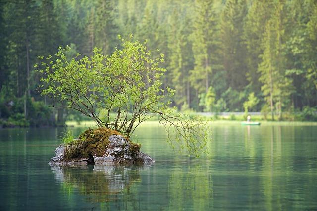ostrůvek v jezeru