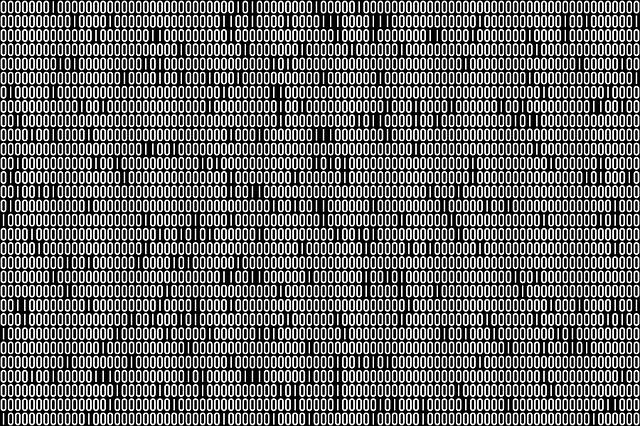 zobrazení datového kódu